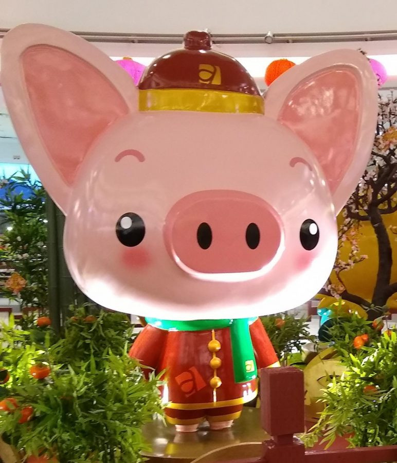 The Pig Zodiac Animal